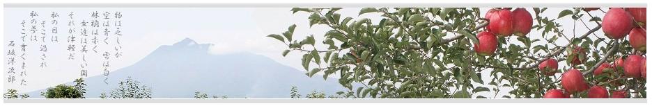 株式会社 津軽りんご市場 - 全国初 りんご専門卸売市場!